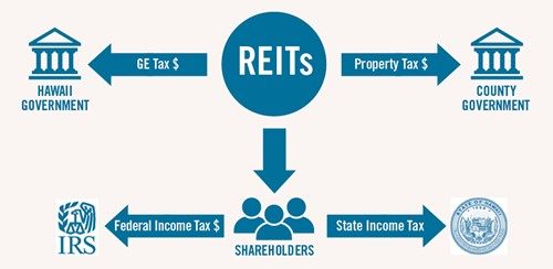 How REITs are taxes infographic